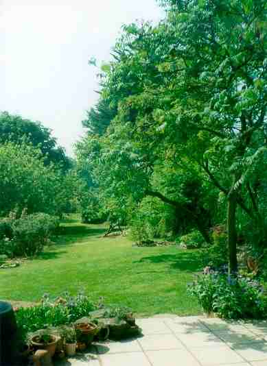 The Garden - Accommodation in Tiverton